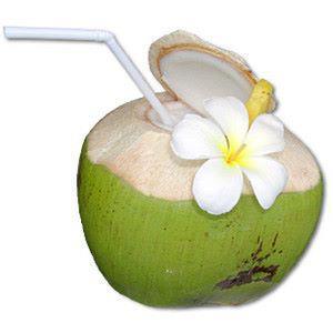 Image result for kelapa muda