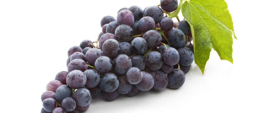 7 Tips Memilih dan Menyimpan Anggur