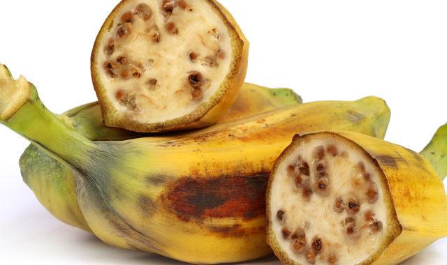 Image result for pisang batu